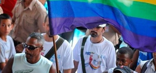 bandera-gay--490x578.jpg